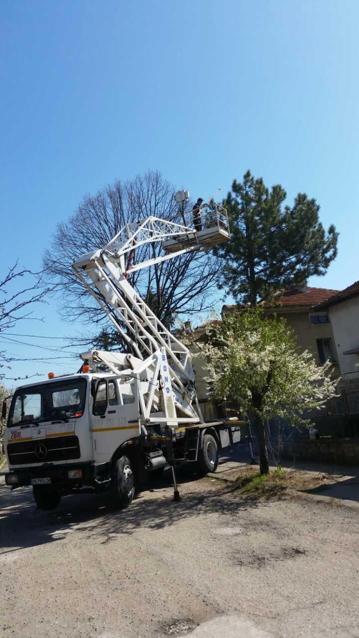 Рязане на опасни дървета и клони с автовишка в Пловдив